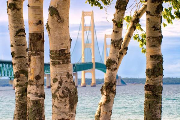 2017 jim jacoby nature and landscape photography seminar bridge